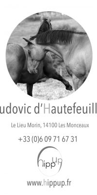 Hippup-ludovic-dhautefeuille